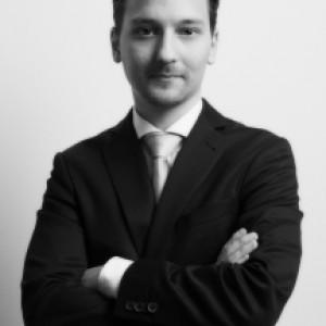 Rechtsanwalt  David Herz